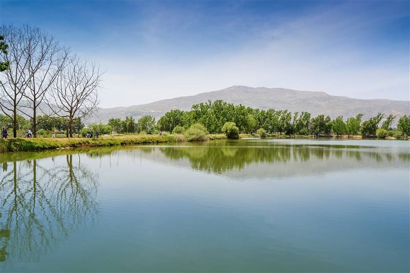 Beautiful reflections | Taanayel Lake, Bekaa Lebanon. Good afternoon dear... (Taanayel Lake)